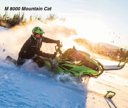 mountaincat_17