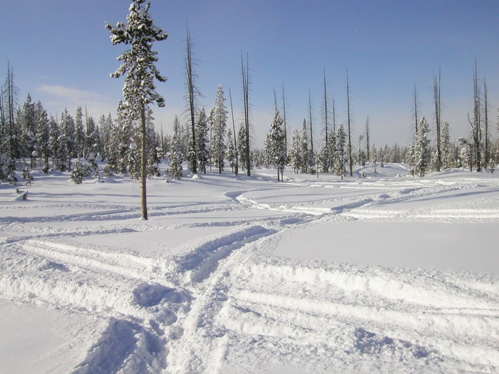 Snowmobile off trail riding, trespassing